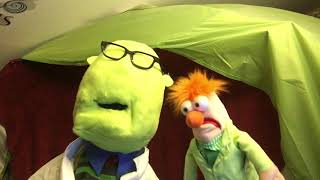 Bunsen and Beaker Sing Your Song