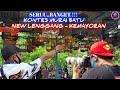 Seru Banget Kontes Murai Batu New Lenggang Kemayoran  Mp3 - Mp4 Download