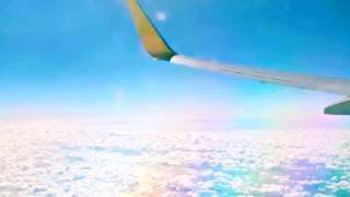 やなぎなぎ「in flight」