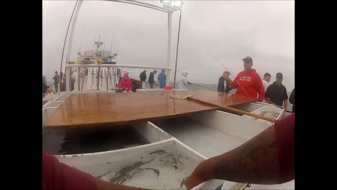 Seaforth san diego fishing calico madness youtube for San diego sportfishing fish counts