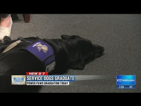 Service dog graduates