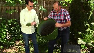 How To Plant Grass Seed - Quick and Easy Tips