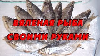 Приготовление вяленой рыбы своими руками в тузлуке. Как вялить рыбу в домашних условиях(Специально для сайта http://berdfish.com.ua/ И какой же рыбак не любит вяленую рыбу?! Но не ту замученную и поржавевшую..., 2015-05-10T18:46:42.000Z)