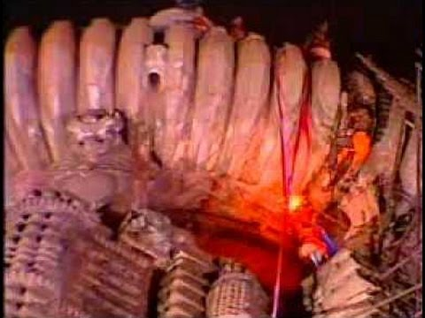 Lingaraj temple Maha Shivaratri live 2013