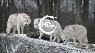 Macklemore & Ryan Lewis - Can't Hold Us (HBz Remix)