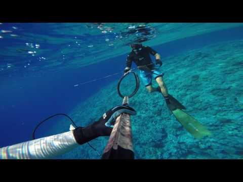 Spearfishing Niue 2017 I