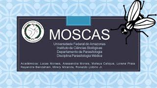 Parasitologia -  Moscas