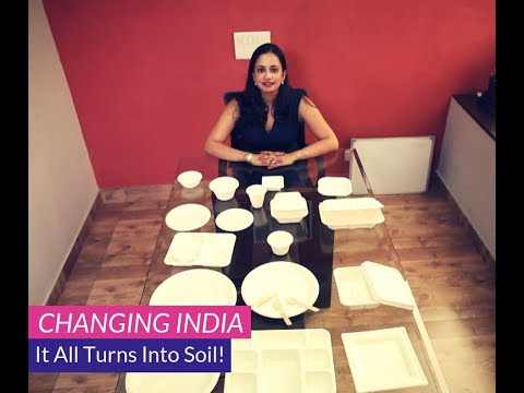 Changing India: Ecoware