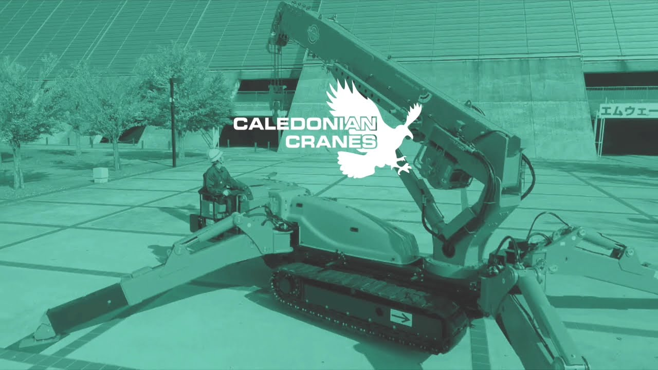 Operation Guides Caledonian Cranes, Scotland. 2