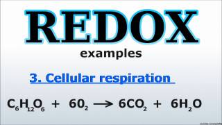 Redox reactions: basic explanation and forming equations