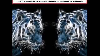 видео Купить Бампер на Nissan Juke в Барнауле, тел. 22-32-35