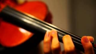 Risky Game(リスキーゲーム) -Hatsune Miku (Violin Cover)