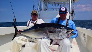 Topwater Bluefin on the Fourth of July