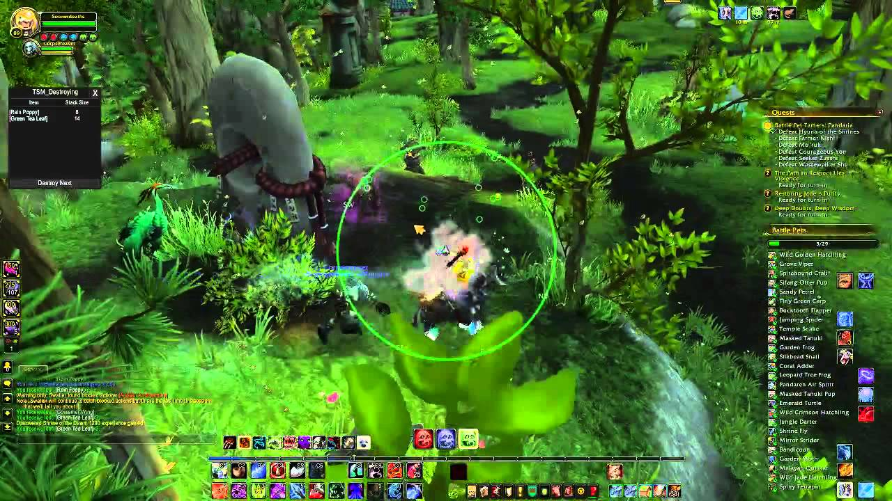 wow how to get to valley of eternal blossoms