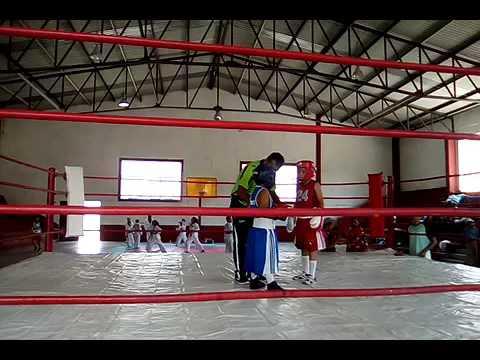 Box en peñamiller feria 2016 Pedro vs Erick 1ra parte