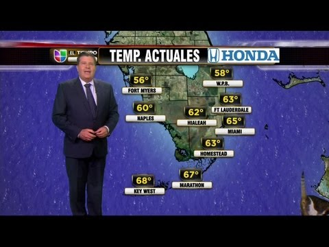 Univision News - A Cat Interrupts Univision's Weather Report - YouTube