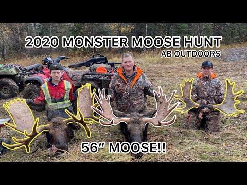 MONSTER CANADIAN MOOSE HUNT AND CRAZY BULL MOOSE ENCOUNTER [2O2O HUNT]
