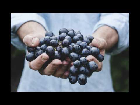 Should Grapes Be Kept In Fridge