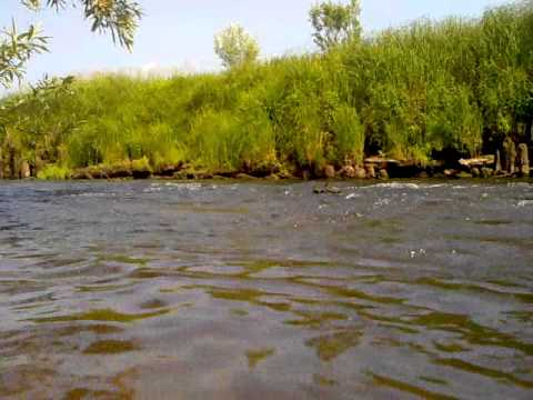 река сюзью рыбалка