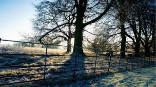 The wonder of winter walking