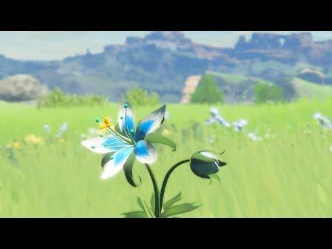 Open Your Eyes (Zelda: Breath Of The Wild Remix)