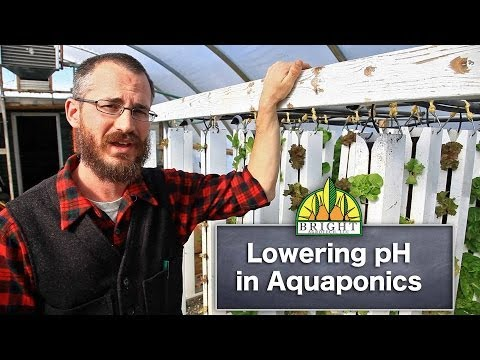 Lowering pH in Aquaponics Systems
