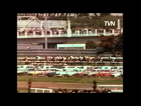 1974 Melbourne Cup- Think Big