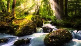 Mozaiek - Forest (Original Mix)
