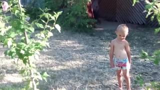 Отдых лермонтово, ростовская 10(, 2016-08-12T16:11:01.000Z)