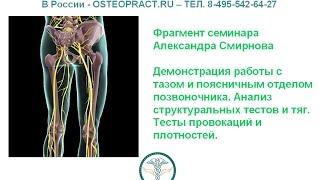 Таз и поясничный отдел - оздоровление, лечение - остеопат Смирнов