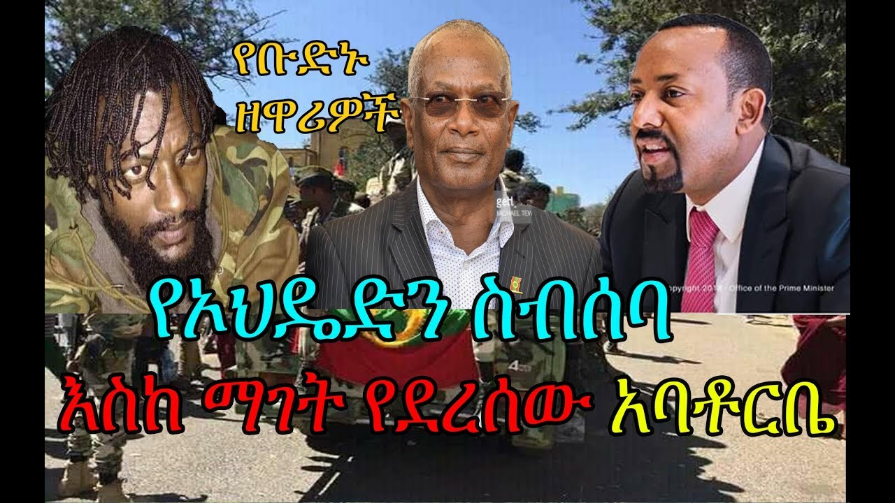 Oromo Democratic Party meeting and OLF actions