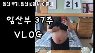 막달임산부, 코로나검사, 젖병소독, 레이퀸 6세대, 보…