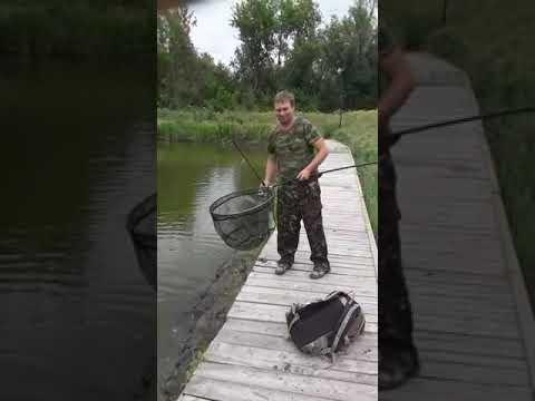 Приглашаем на наш пруд порыбачить на форель. Село Девица ...