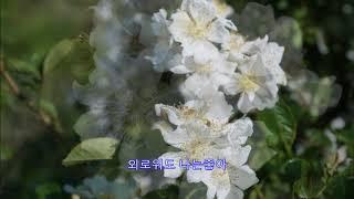 유정천리 - 박재홍: 강당마을2017년 5월 21일