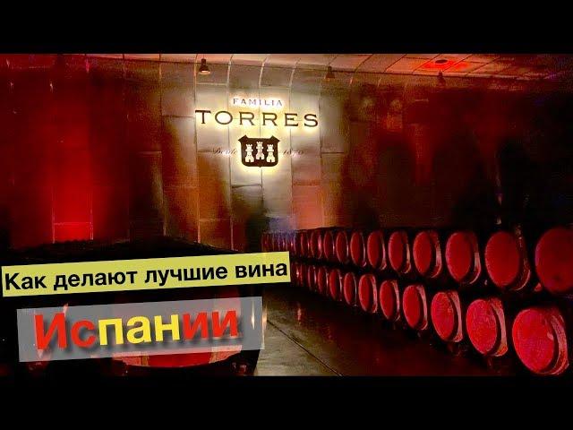 Torres винодельня - лучшее вино Испании | раскрываем секреты, как делают легендарные вина