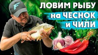 Ловим рыбу на чеснок и перец чили! Как сделать ликвид в домашних условиях?!