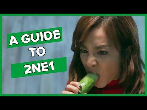 An unhelpful guide to 2NE1