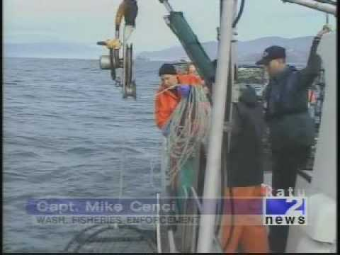 High seas crab bust poaching oregon state police for Wa fish and game
