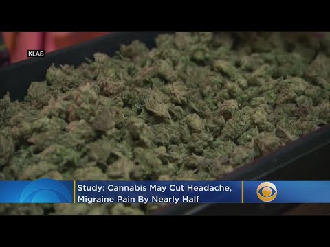 Study: Cannabis May Cut Headache And Migraine Pain By Nearly Half