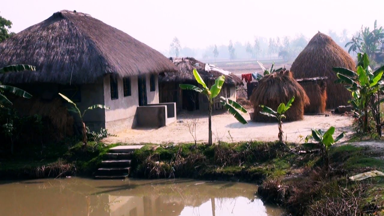 Village Huts Canning West Bengal