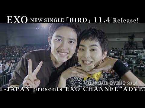 EXO  New Single「BIRD」収録[FANCLUB EVENT 2018 & a-nation 2018]ティザー映像
