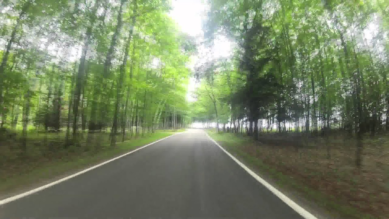 Tunnel of Trees - Cross Village, MI to Good Hart, Mi in 1 min 30 ...