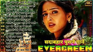 90's 80's Songs  | सदाबहार गाने | Evergreen Old Songs | Udit Narayan & Alka Yagnik Songs