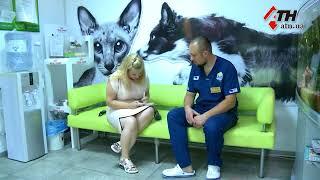 Собаку, замученную до полусмерти, нашли возле стадиона в Харькове - 06.07.2018