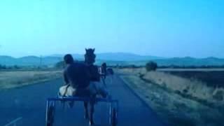 sastezanie s kone risaci Explorator vs Entourage    c.Dyadovo