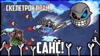 Скелетрон Санс и другие железяки! || Призыватель на эксперте #3