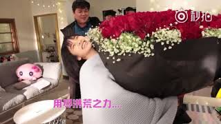 Shen Yue lifting a big flowers (Dylan Gave it to her)