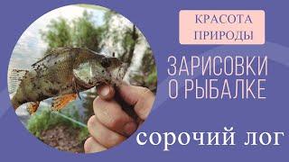 Зарисовки о рыбалке Сорочий Лог Красота природы