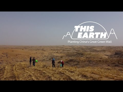 Reforestation and China's Great Green Wall