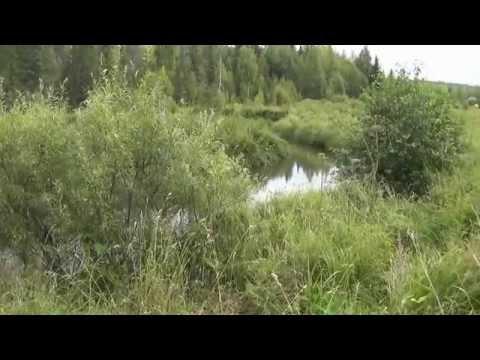 знакомства александровск пермский край для секса